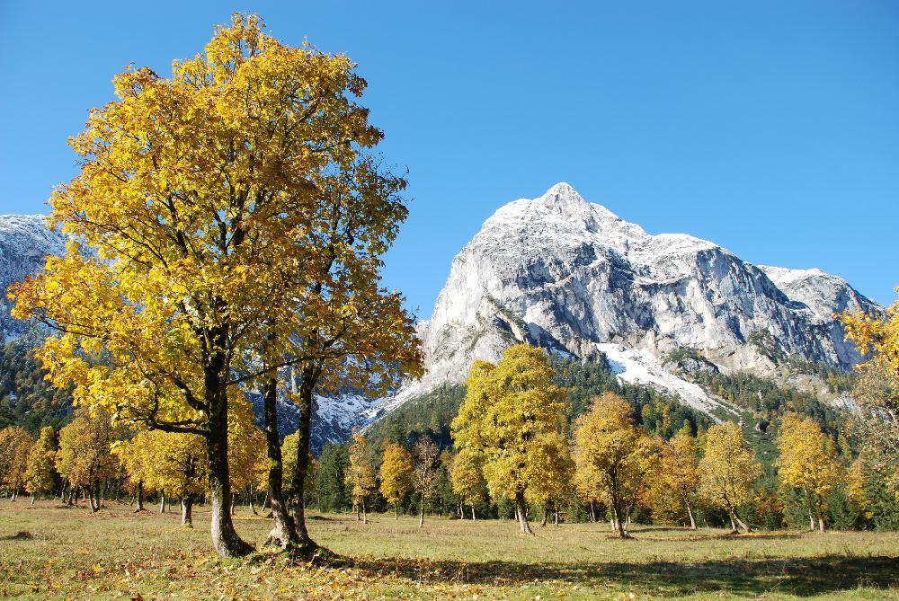 Engalm Herbst - wunderbar zum Wandern