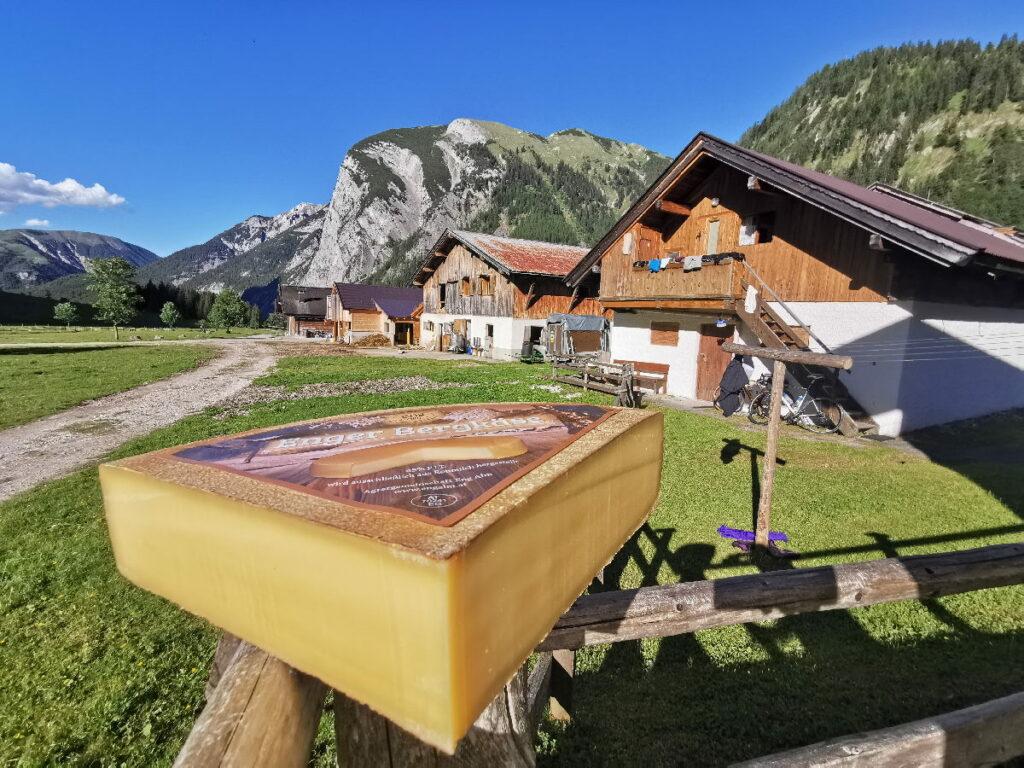 Der berühmte Käse der Eng Alm