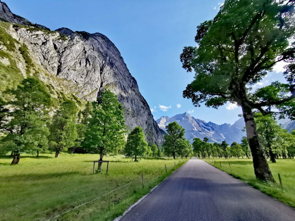 Eines der Erlebnisse von Hansjörg Reiter: Zwischen den Bäumen am Ahornboden fahren